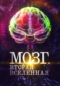 Мозг. Вторая Вселенная смотреть сериал