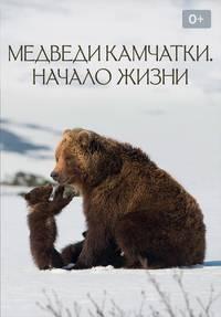 Медведи Камчатки. Начало Жизни смотреть сериал