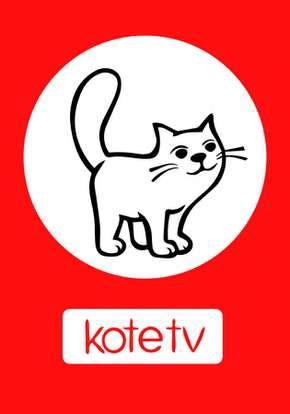 Коте ТВ смотреть сериал