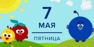 Кругляши - 49 серия