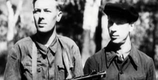 Великая война - 14 серия. Партизаны