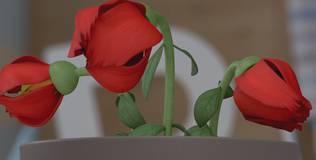 Малышарики - Серия 21. Цветок