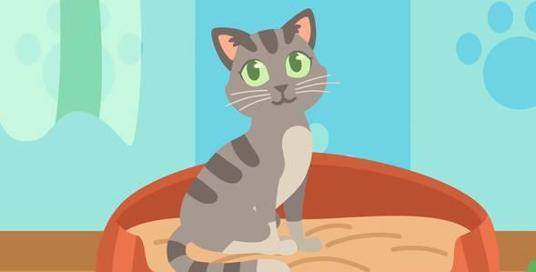 Серия 56. Киса кошка Кукутики смотреть онлайн